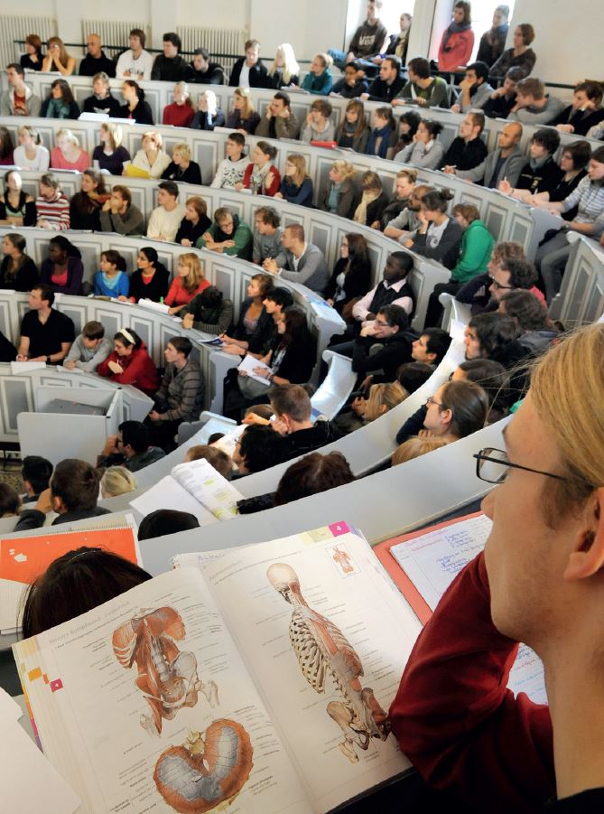 Vorlesungen: Anatomie im Livestream