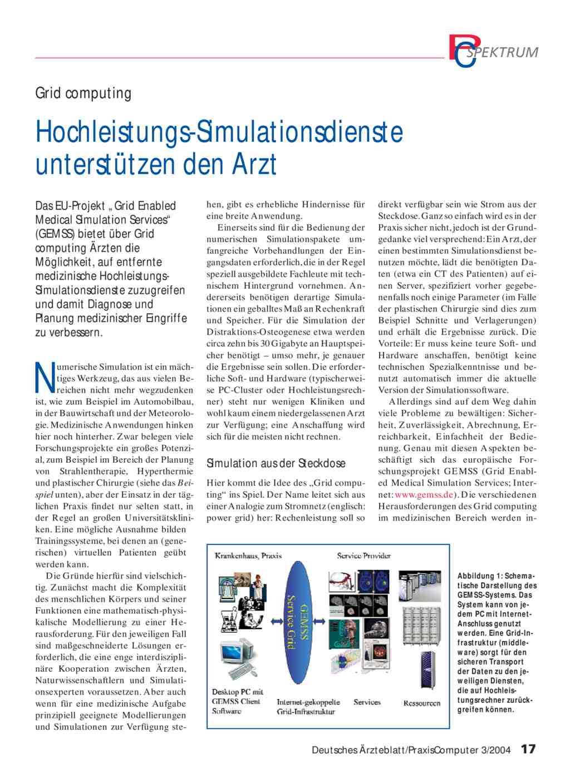 Grid computing: Hochleistungs-Simulationsdienste unterstützen den Arzt