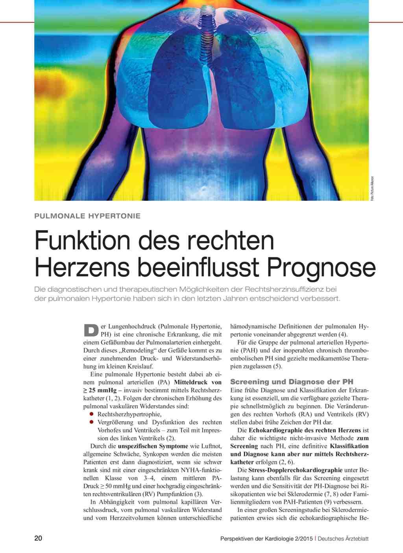 Fantastisch Funktion Des Rechten Vorhofs Galerie - Menschliche ...