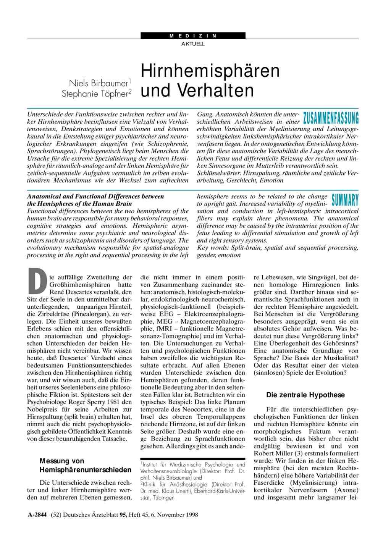 Hirnhemisphären und Verhalten