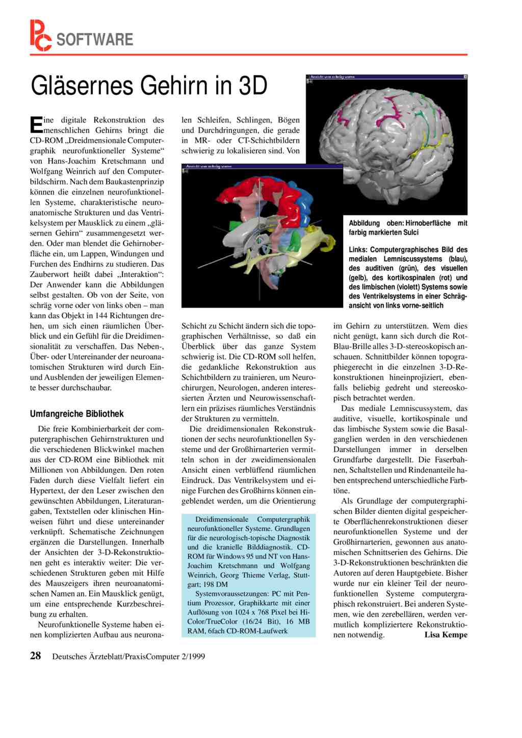 Gläsernes Gehirn in 3D
