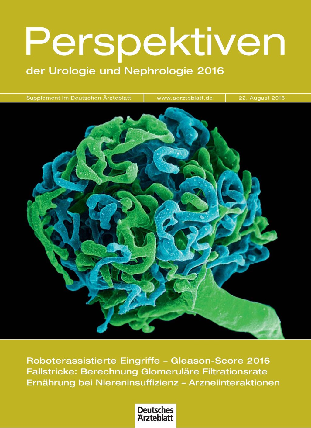 Supplement: Perspektiven der Urologie